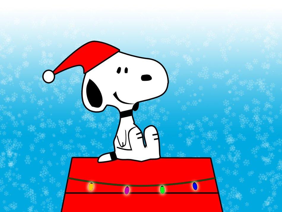 Chiusura segreteria per feste natalizie